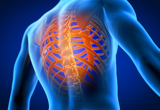 Active Rehab for Traumatic Spinal Injuries Webinar – Healthcare
